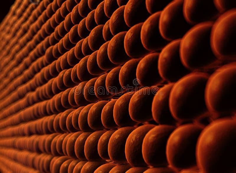 Membrana de plasma de uma pilha fotografia de stock