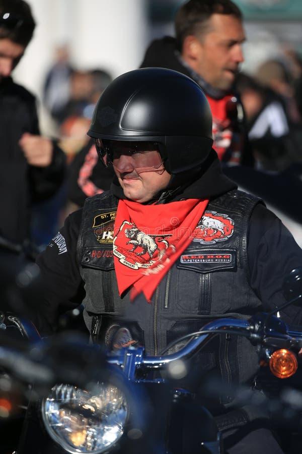 Membro del club ROSSO del motore del MAIALE con il fazzoletto da collo di un club fotografie stock