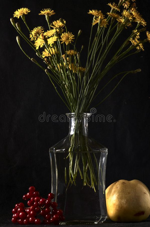 Memento Mori. Still life of a skull, viburnum, a glass bottle with a bouquet stock photography
