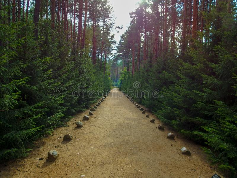 Memorial alley devoted to the victims of Sobibor nazi extermination camp in 1943. The path is located ion the terrain of the Sobibór Nazi German stock images