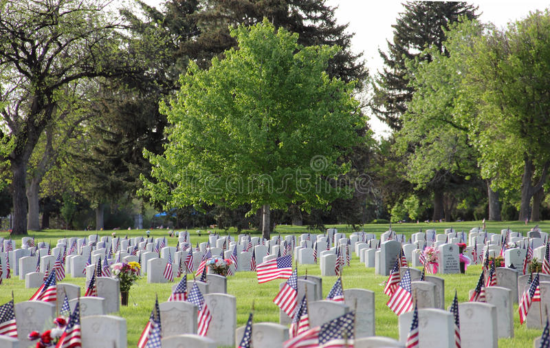 Memorial Day Förenta staternaflaggor på militära gravstenar i kyrkogård royaltyfri fotografi