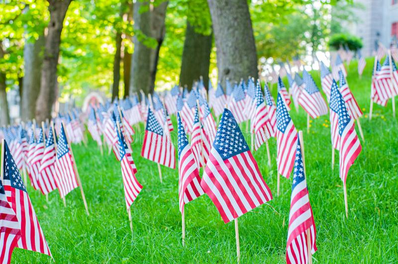 Memorial Day.  Small American flags on a green grass in park stock images