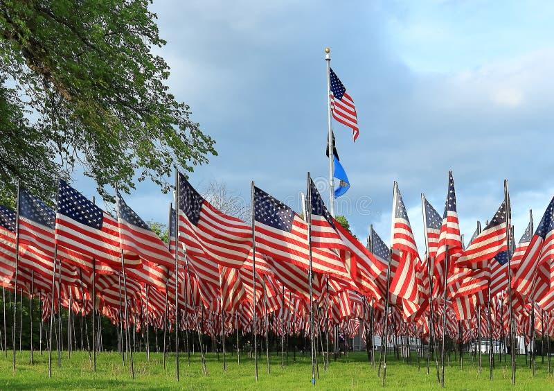 Memorial Day in U.S.A. - bandiere americane sistemate nelle file sul quadrato forte immagini stock libere da diritti