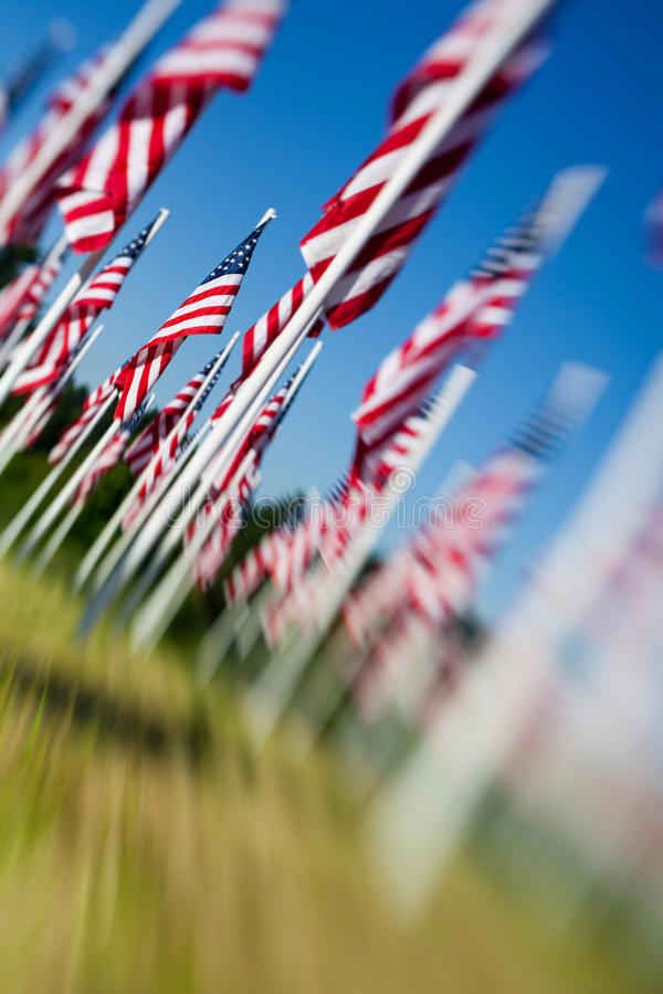 Memorial Day USA - American flags royalty free stock images