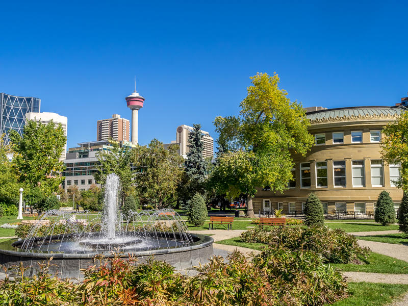 Memorial Park in Calgary. Alberta Canada during the beautiful fall season stock photography