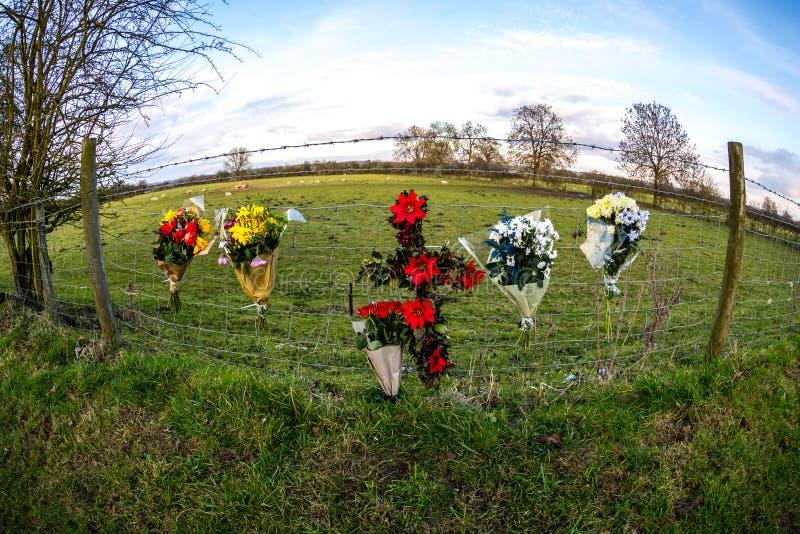In memoriam STRAPPO dei fiori fotografia stock