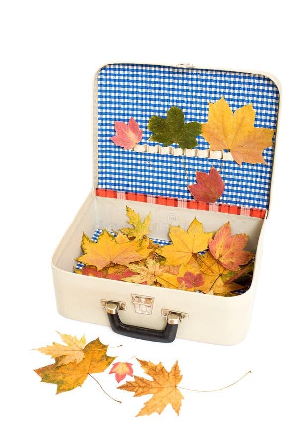 Memorias del día de fiesta del otoño foto de archivo libre de regalías