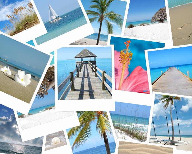 Memorias tropicales fotos de archivo