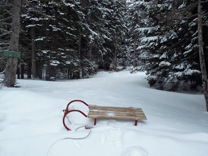 Memorie di inverno fotografie stock libere da diritti