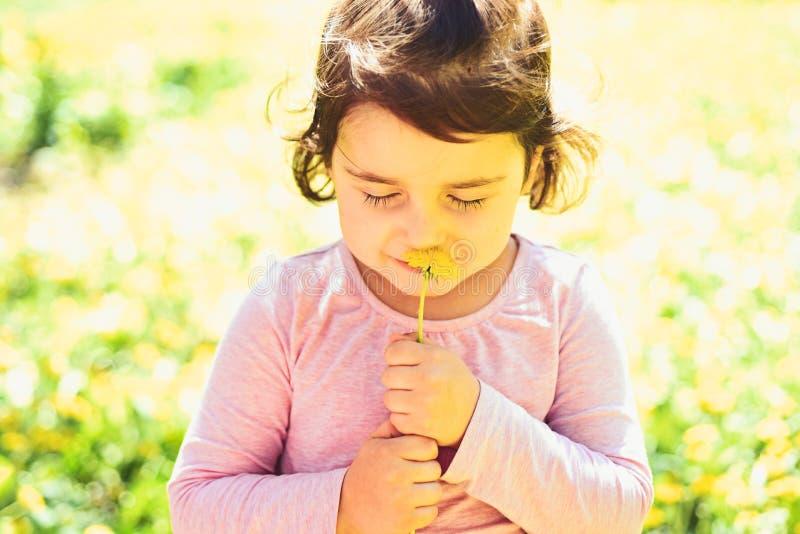 Memorizzi questo momento Skincare del fronte Allergia ai fiori Modo della ragazza di estate Infanzia felice primavera tempo fotografia stock