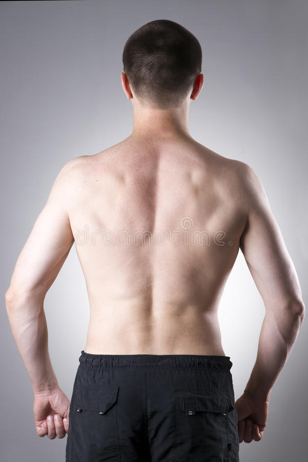Men back close-up. On a gray background royalty free stock images