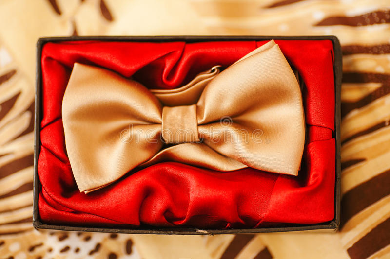 Men bow-tie in box with red. Golden silk accessory royalty free stock photo