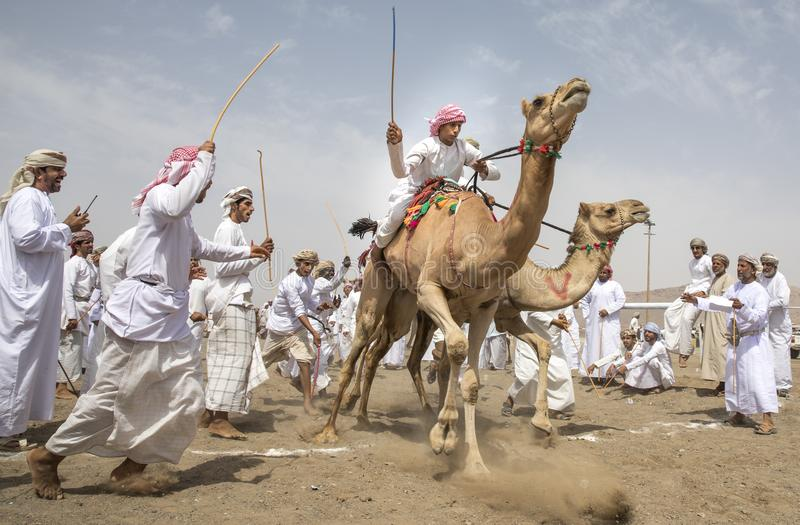 Men on camels at the start of a race royalty free stock photos