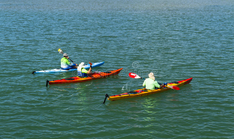 Men canoeing in the lake. stock photography