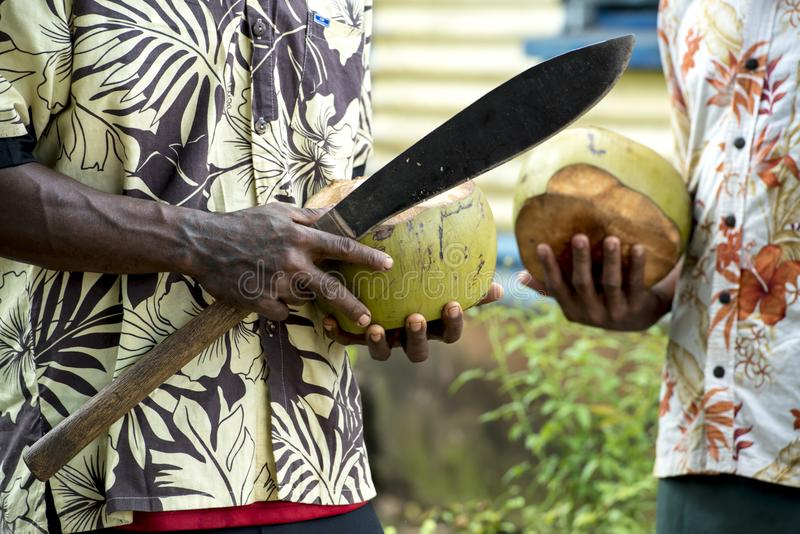 Men in Fiji, machete in hand opening coconut stock photography