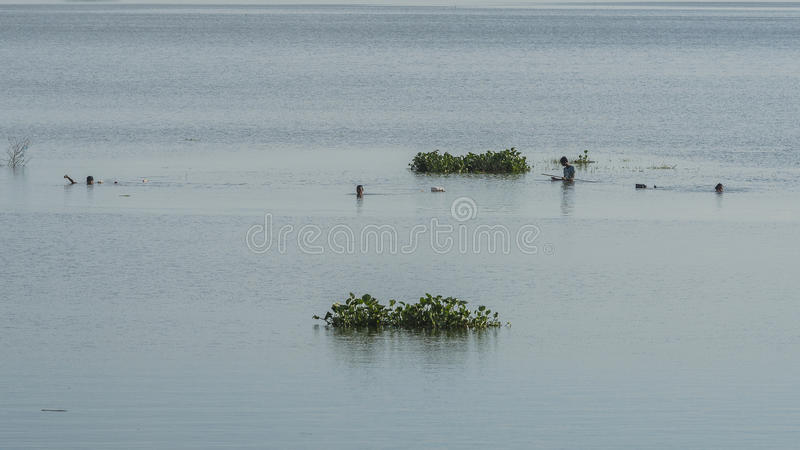 Men fishing in the lake stock photography