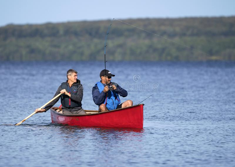 Men Fishing for Small Mouth Bass from a Red Canoe in late September. Two active fishermen on Georgian Bay near Christian Island reel in a fish from a red kevlar royalty free stock photo