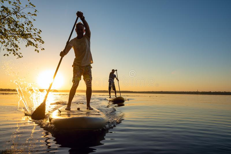 Men, friends sail on a SUP boards in a rays of rising sun. Stand up paddle boarding - awesome active recreation in nature. Backlight stock photos