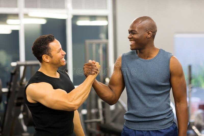 Men handshaking gym royalty free stock image