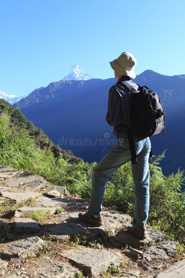 Men Hiker,Himalaya Mountains,Nepal. Men hiker walking in Himalaya Mountains in Nepal. Fish tail as background stock photo