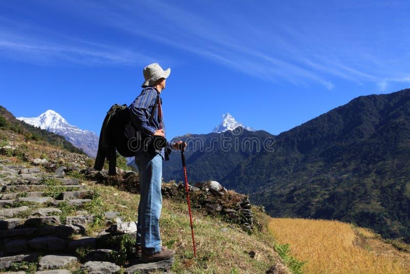 Men Hiker,Himalaya Mountains,Nepal. stock images