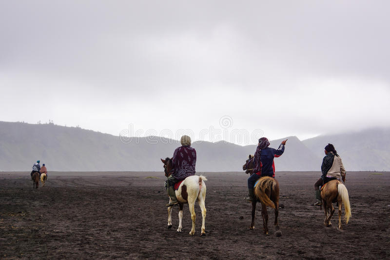 Men with horse in bromo stock image