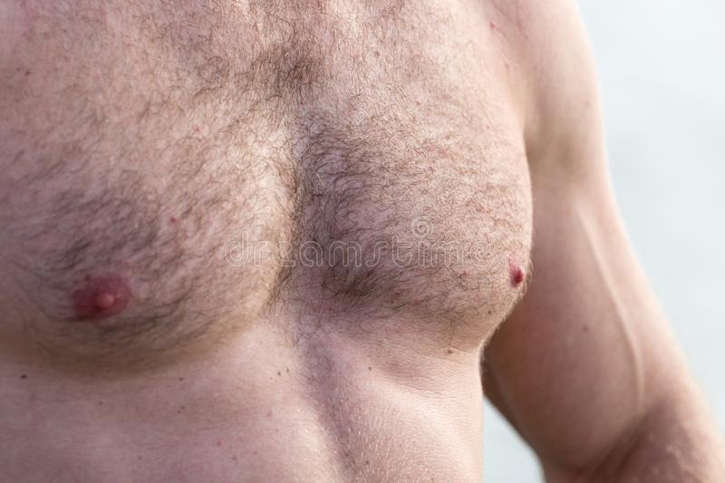Men inflated chest as background royalty free stock images