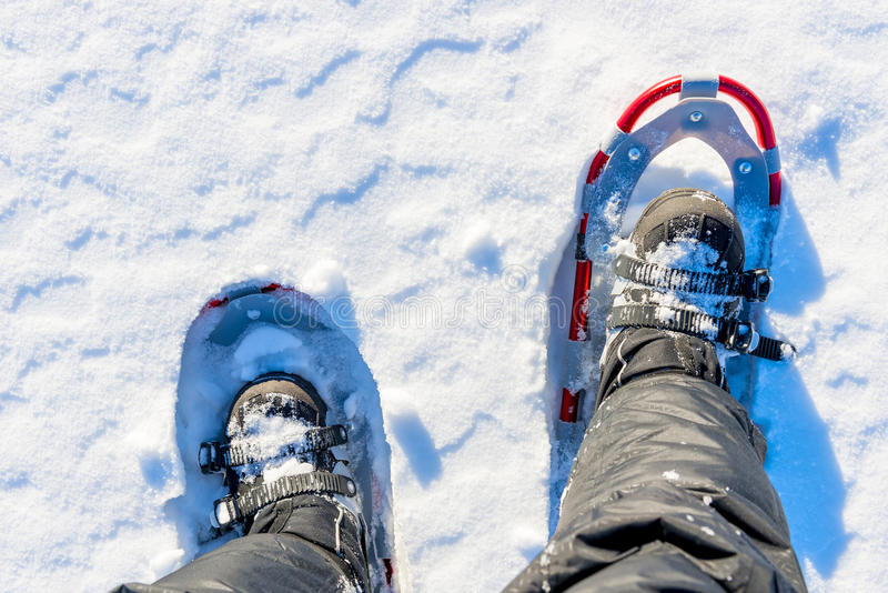Men legs are shod with snowshoes. On the snow stock images