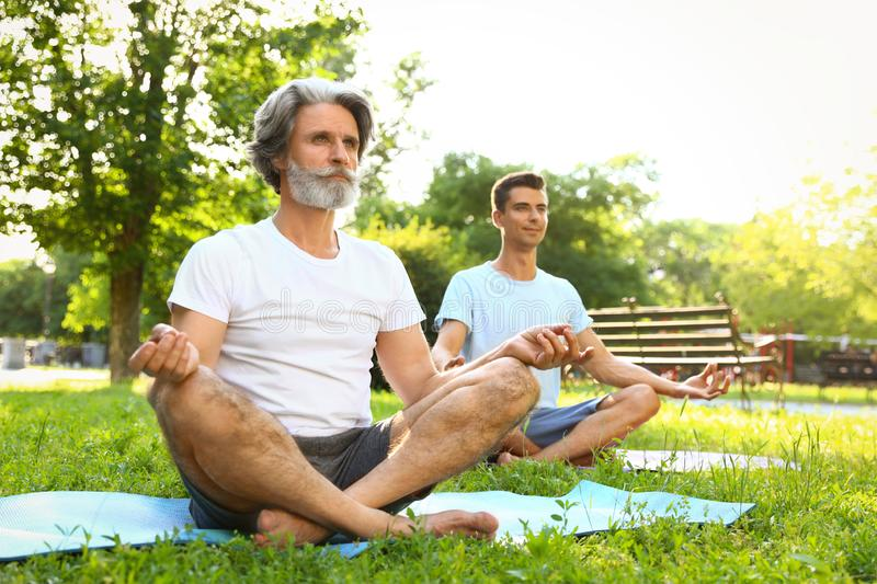 Men practicing morning yoga in park royalty free stock images
