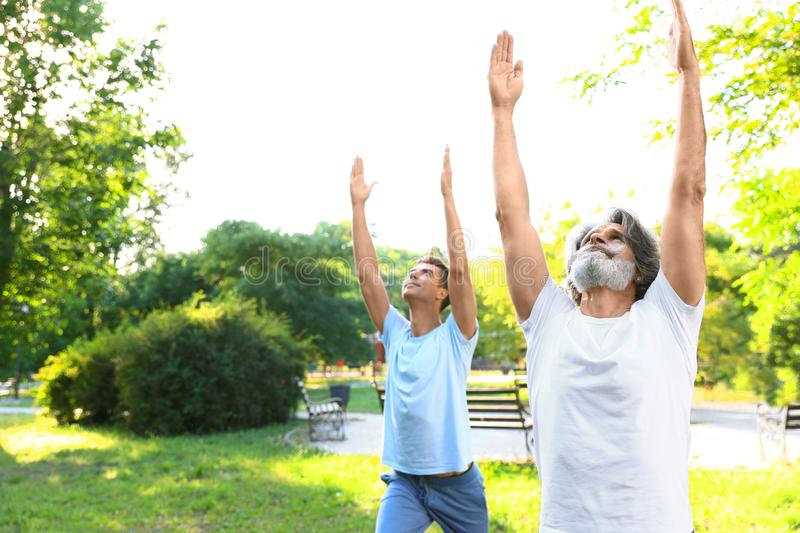 Men practicing morning yoga in sunny park. Space for royalty free stock image