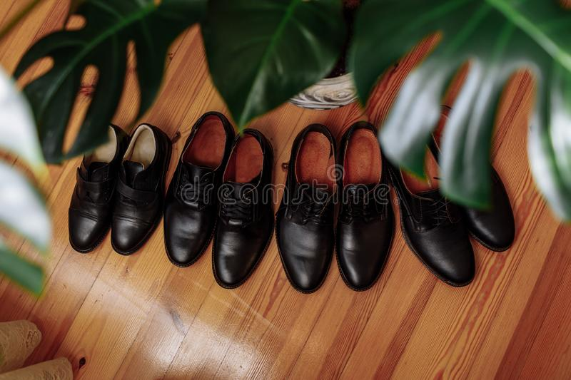 Men's Shoes Concepts : black leather shoes placed on the floor near the houseplant. four pairs of men's boots stock photos