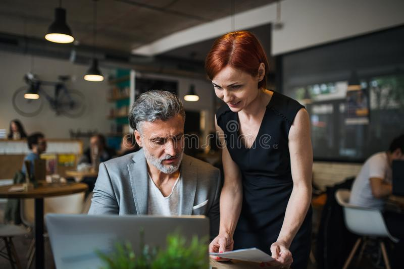 Man and woman having business meeting in a cafe, using laptop. royalty free stock photos