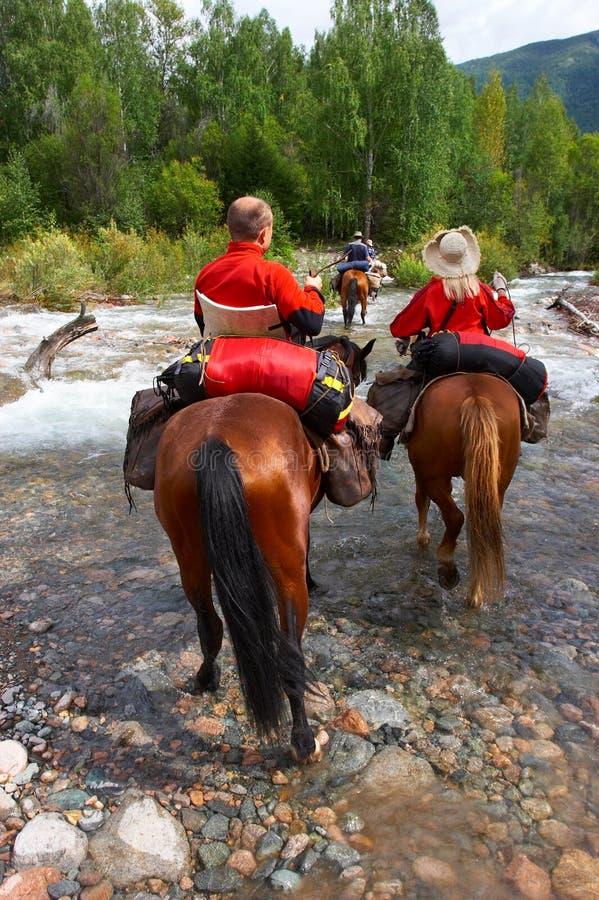 Download Men, women and horses. stock image. Image of animal, walk - 1413917