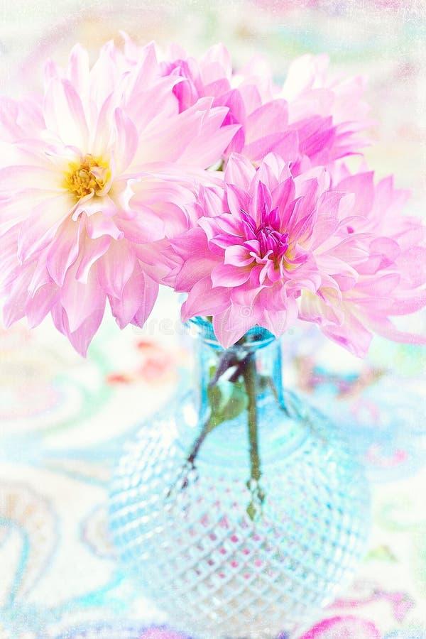 Menchia kwiaty obrazy stock