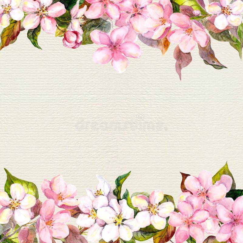 Menchia kwiaty - jabłko, czereśniowy okwitnięcie Kwiecista rama dla pocztówki Watercolour na papierowym tle royalty ilustracja
