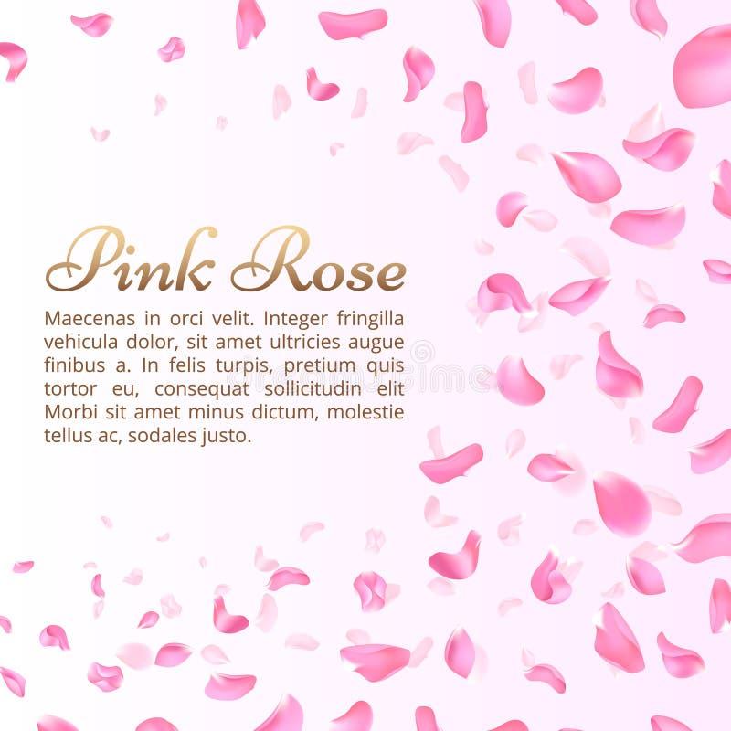 Menchii róża lub Sakura spada płatki Elegancki romantyczny wektorowy tło ilustracji