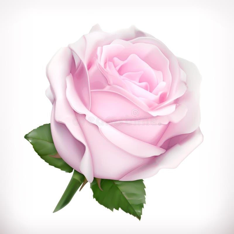 Menchii róży wektoru ilustracja ilustracja wektor