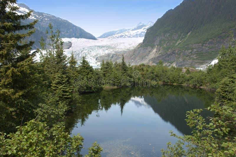 mendenhall för alaska glaciärjuneau lake nära royaltyfri foto