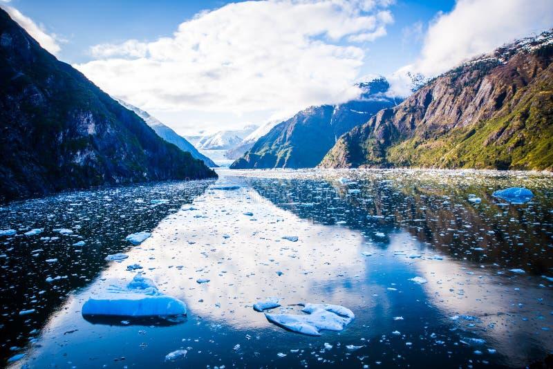 Mendenhall glaciär i Juneau Alaska arkivbild