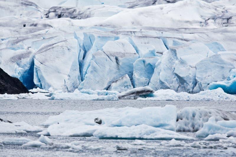 Mendenhall Gletscher stockfotos