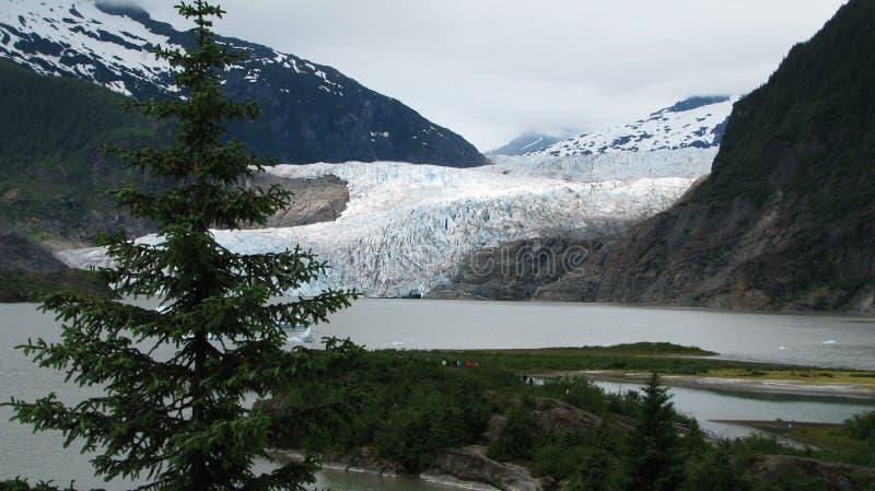 Mendenhallgletsjer in Juneau Alaska royalty-vrije stock foto