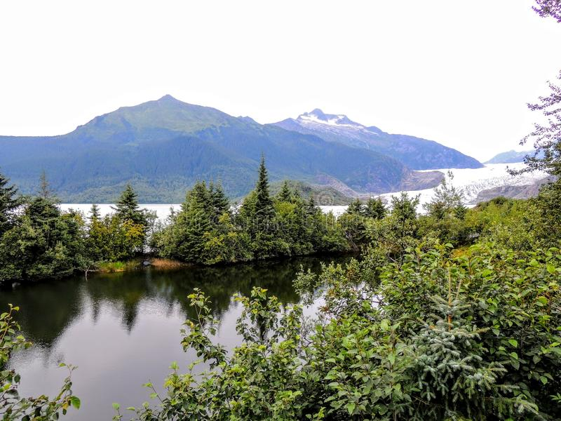 Mendenhallgletsjer Juneau Alaska van Sleep royalty-vrije stock foto