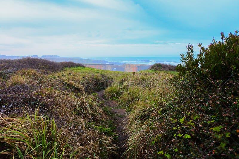 Mendocino加利福尼亚与海洋曲拱的风景视图 免版税库存照片