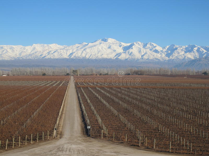 mendoza photos stock