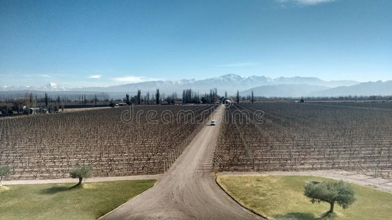 Mendoza Argentina Wine Country royalty free stock images