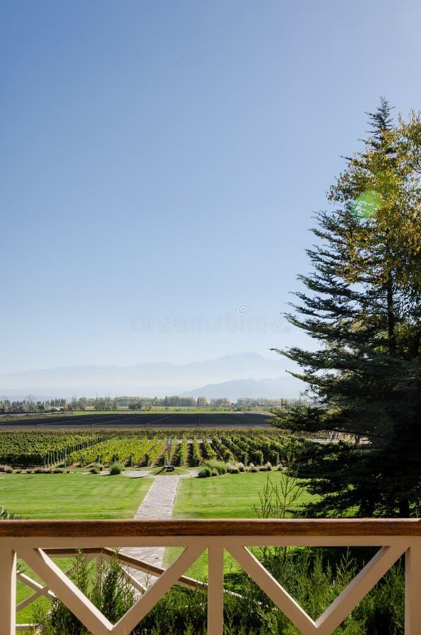 Mendoza, Argentinië 15 April 2019: Mooie bergen en wijngaardmening van Norton Vineyards stock foto's