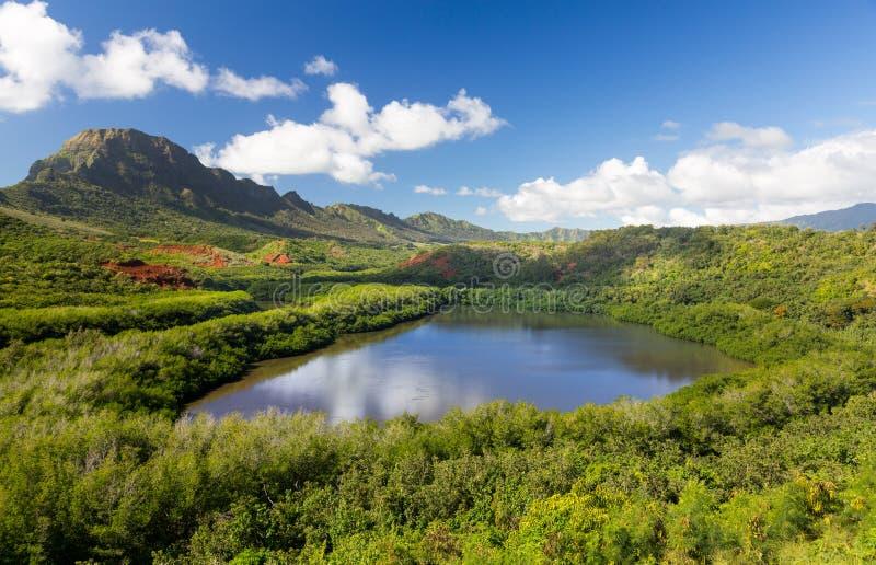 Menehune fishpond Kauai Hawaï stock afbeeldingen