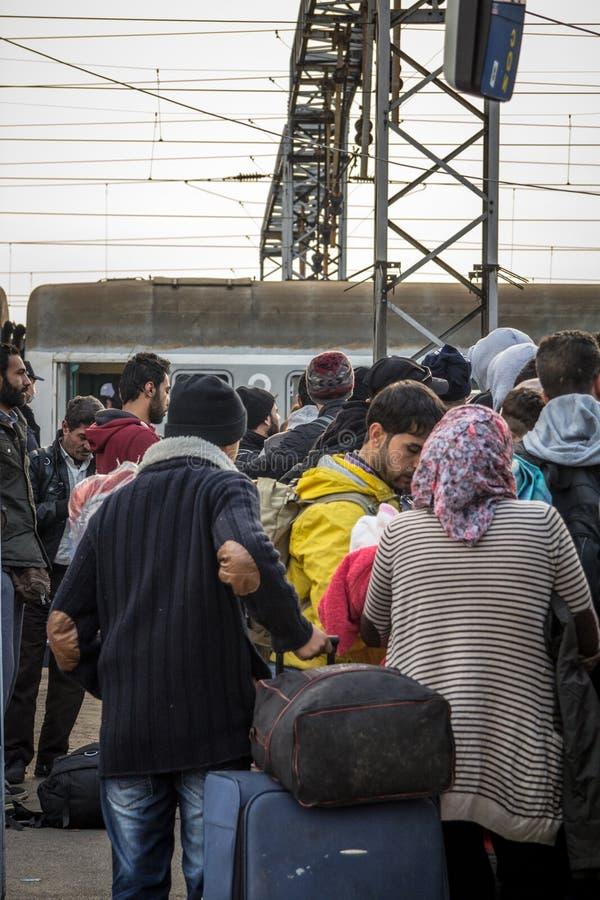 Menge von den Flüchtlingen, die stehen und, die warten, um die Grenze Kroatiens Serbien, am SID-Bahnhof auf dem Balkan-Weg zu kre stockbild