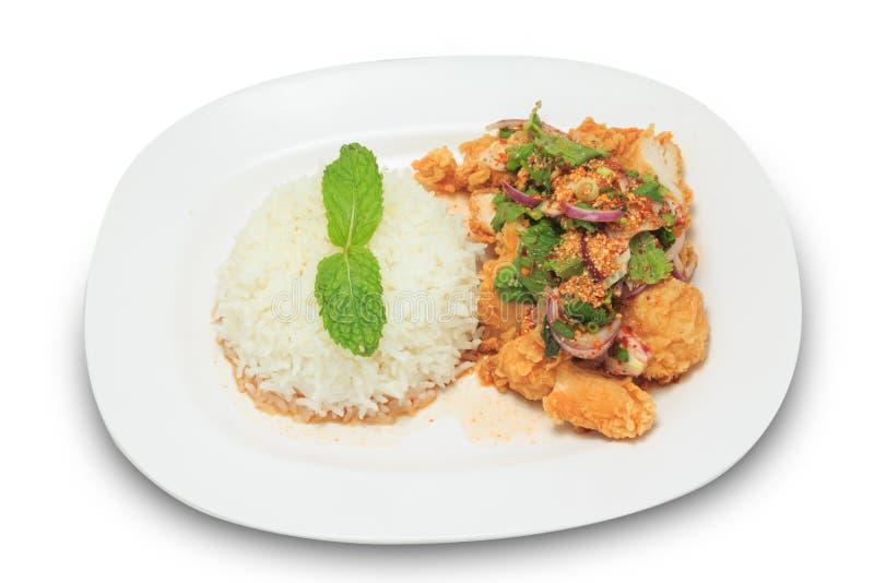 Mengelings kruidige gebraden kip met rijst royalty-vrije stock afbeelding