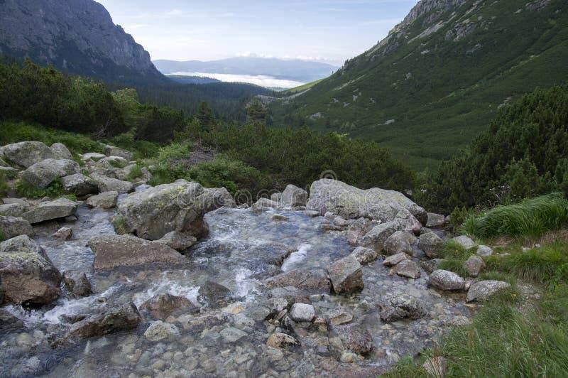Mengusovskadolina, Hincov potok, verbazende steenachtige wandelingssleep aan hoogte zet Rysy over bergstroom op, Hoge Tatra-berge royalty-vrije stock afbeelding